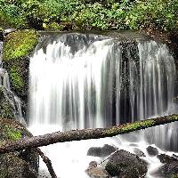 Cascade sur un petit ruisseau Ariégeois